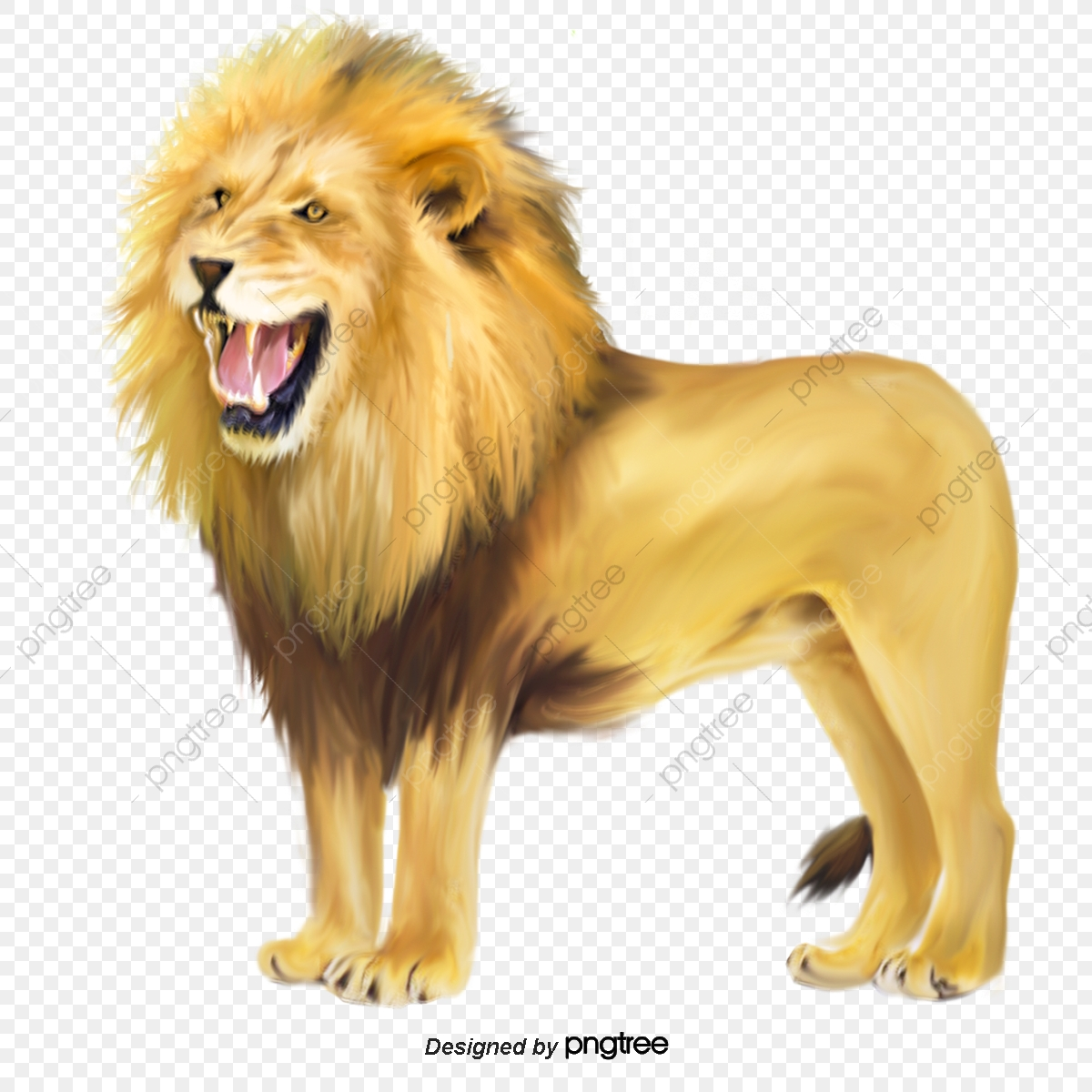 hight resolution of commercial use resource upgrade to premium plan and get license authorization upgradenow roaring lion