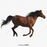 Running Horse Png Images Vector And Psd Files Free Download On Pngtree