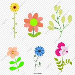 Vector Flowers Spring Flowers Cartoon Flower Flowers Vector PNG Transparent Clipart Image and PSD File for Free Download