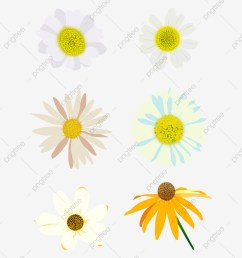 commercial use resource upgrade to premium plan and get license authorization upgradenow daisy daisy clipart  [ 1200 x 1615 Pixel ]