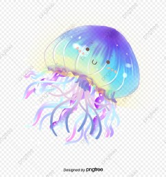 commercial use resource upgrade to premium plan and get license authorization upgradenow jellyfish jellyfish clipart  [ 1200 x 1200 Pixel ]