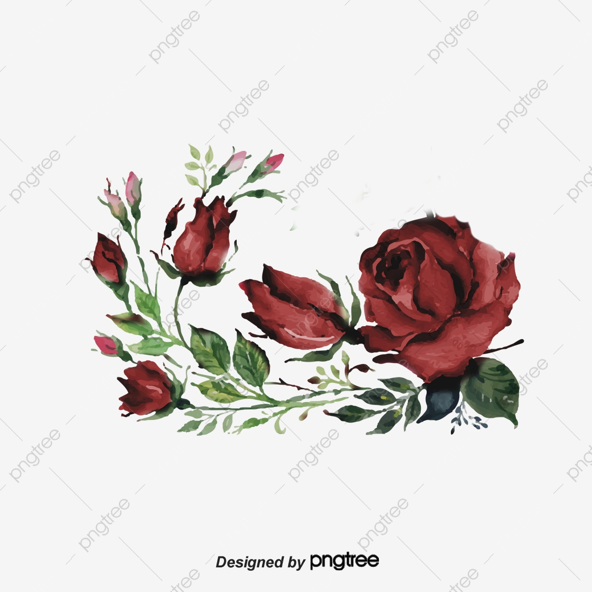 hight resolution of category flower