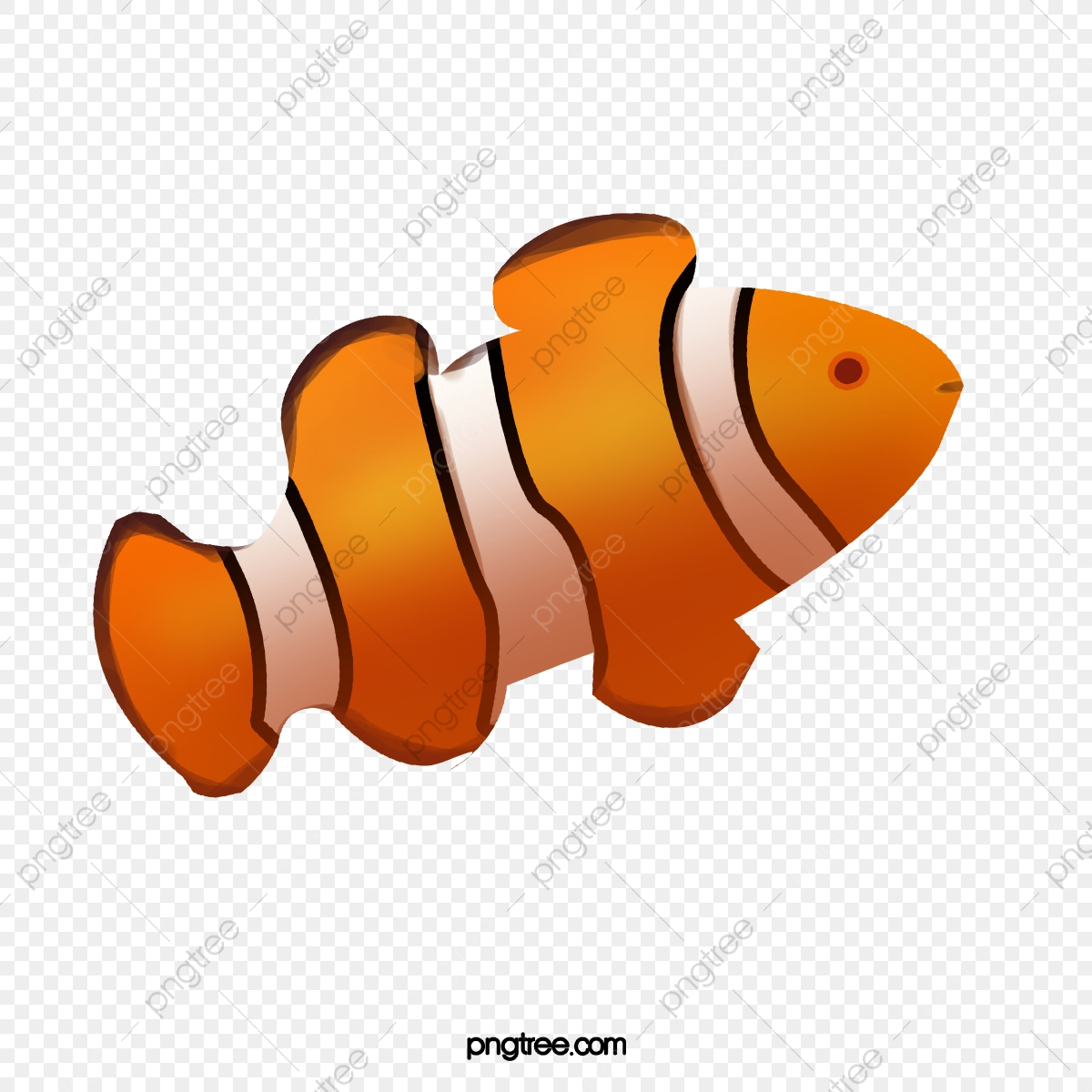 hight resolution of category fish