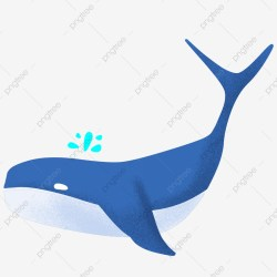 Whales Swimming In The Ocean Blue Whale Cartoon Whale Hand Drawn Whale Animal White Belly Cute Whale Illustration PNG Transparent Clipart Image and PSD File for Free Download
