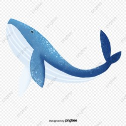 Blue Cartoon Whale Blue Clipart Cartoon Seabed PNG Transparent Clipart Image and PSD File for Free Download