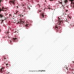 Cherry Blossom Branch Png Vector Psd And Clipart With Transparent Background For Free Download Pngtree
