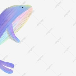 Cartoon Whale Png Vector PSD and Clipart With Transparent Background for Free Download Pngtree