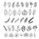 Plants Leaves Botanical Cute Cartoon Doodles Nature Clipart Leaf Leaves Png And Vector With Transparent Background For Free Download
