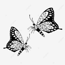 Black And White Simple Linear Butterfly Butterfly Girl Linear PNG Transparent Clipart Image and PSD File for Free Download