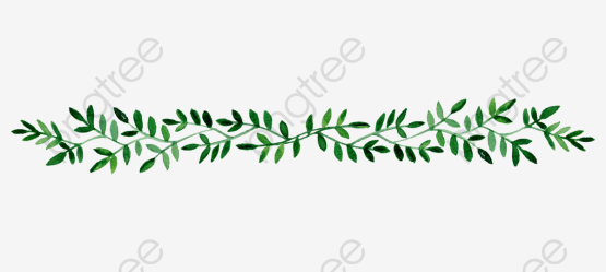border leaf clipart hand painted borders cliparts transparent hojas clipground