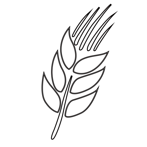 Wheat, Durum Wheat, Ear Of Wheat Icon With PNG and Vector