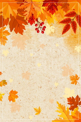 Maple Leaf Wallpaper For Fall Season Download Free Simple Yellow Wheat Background Images
