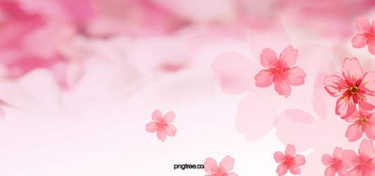Pink Flowers Background Photos and Wallpaper for Free Download