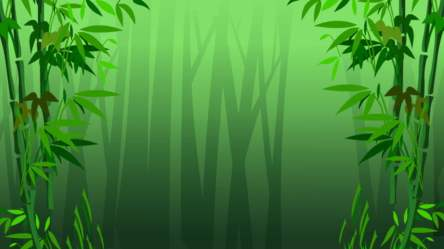 Bamboo Forest Background Photos Vectors and PSD Files for Free Download Pngtree