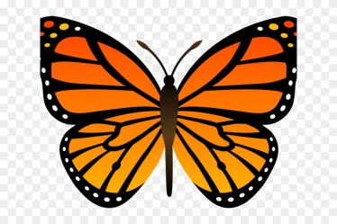 Butterfly Cliparts Transparent Happy Butterfly Clipart HD Png Download 640x480 #2098530 PngFind