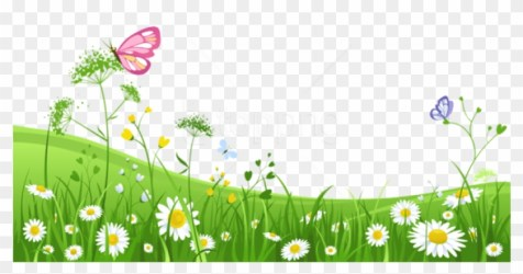 Free Png Download Grass With Butterfliespicture Png Garden Clipart Transparent Png 850x457 #2107019 PngFind