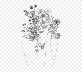 Minimalist Aesthetic Flower Drawing Fundo Madeira