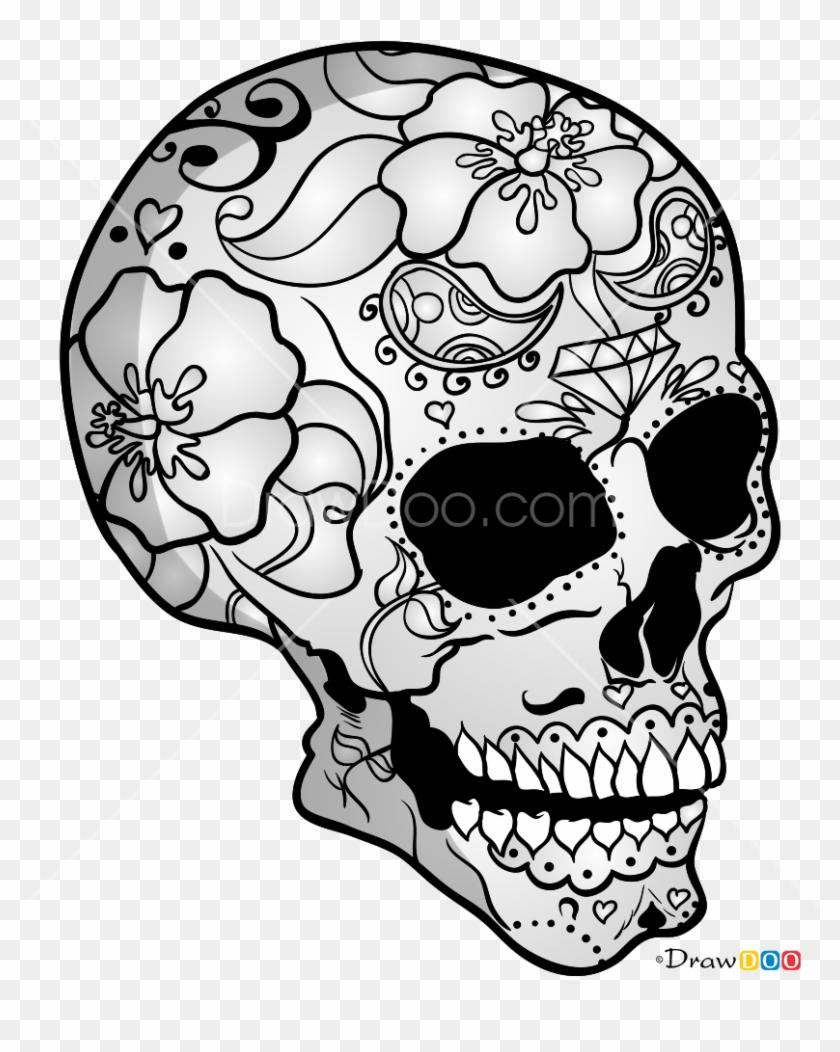Cool Skull Sketch : skull, sketch, Skeleton, Sketches, Skull, Skeletons, Drawings,, Download, 828x998(#2723890), PngFind