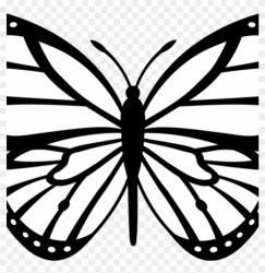 Butterfly Outline Clipart Butterfly Outline Clipart Monarch Butterfly Black And White HD Png Download 1024x1024 #5890551 PngFind