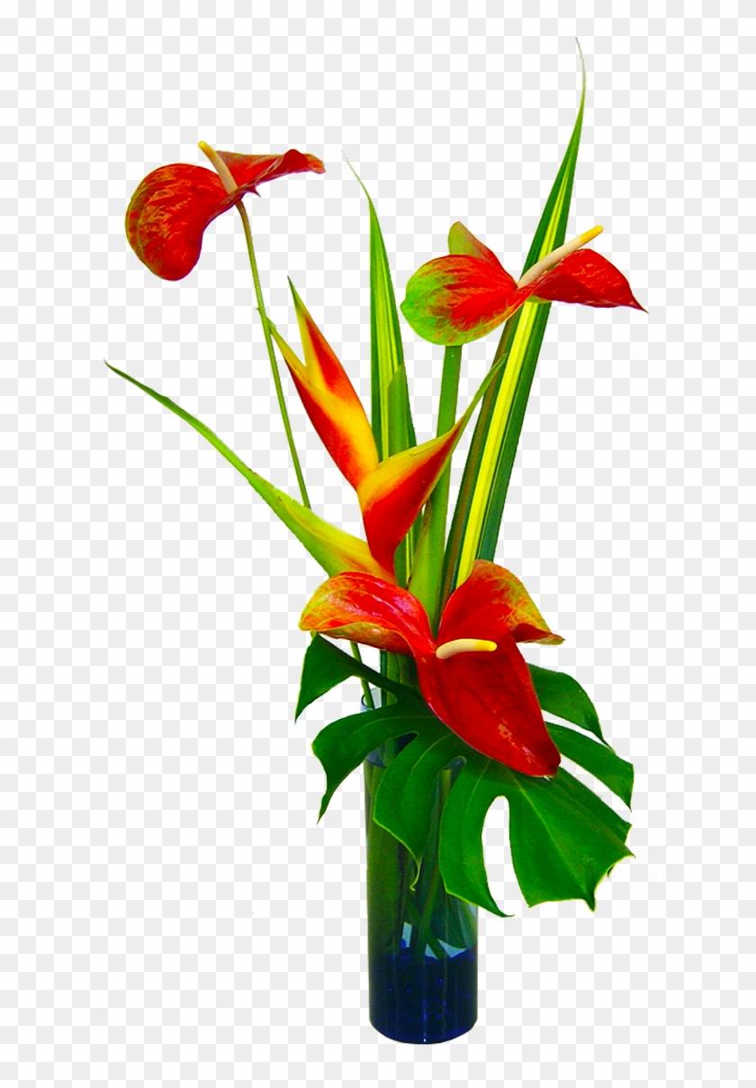 Flower Arrangement Png : flower, arrangement, Tropical, Flower, Arrangements, Arrangement, Transparent, 1200x1200(#619495), PngFind