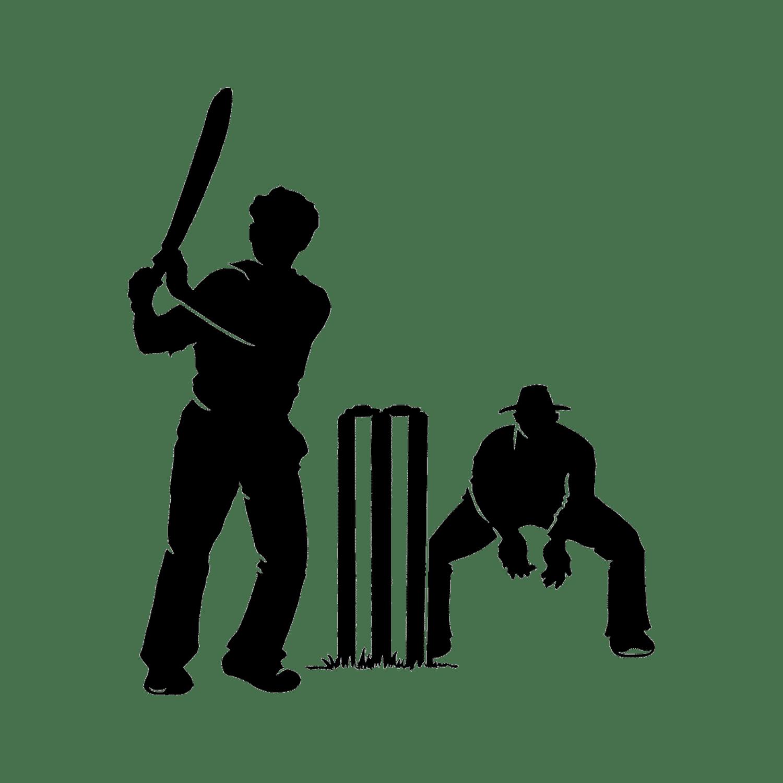 Cricket Transparent Image