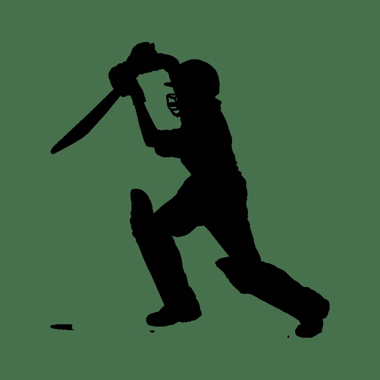 Cricket Transparent Picture