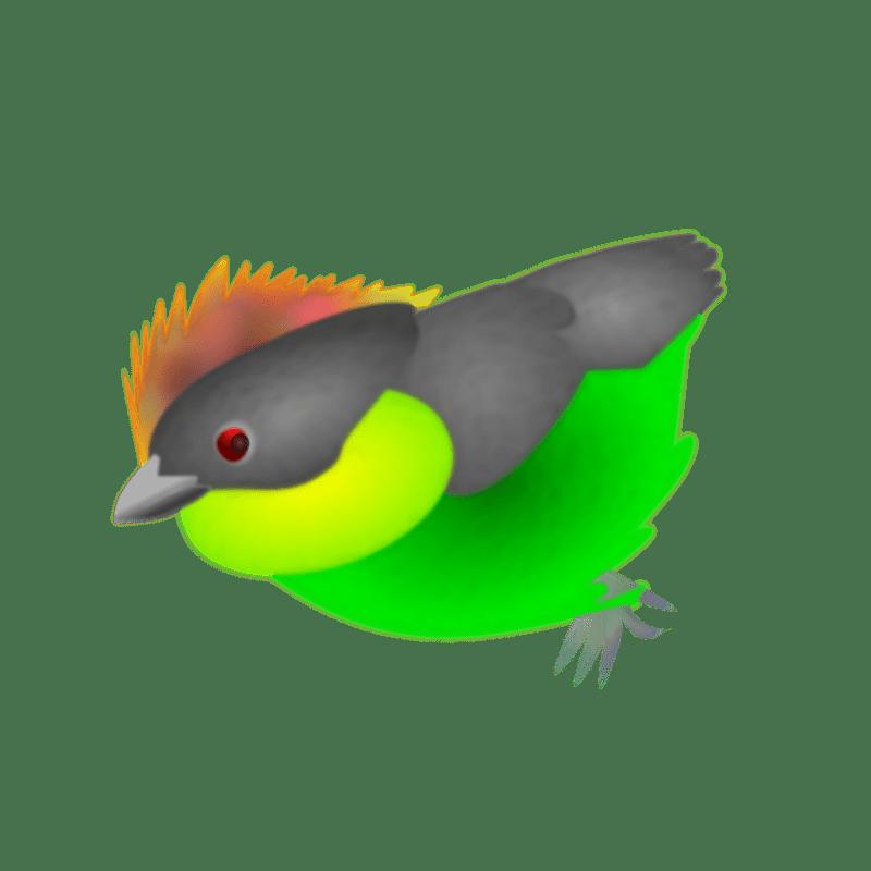 Finch Transparent Image