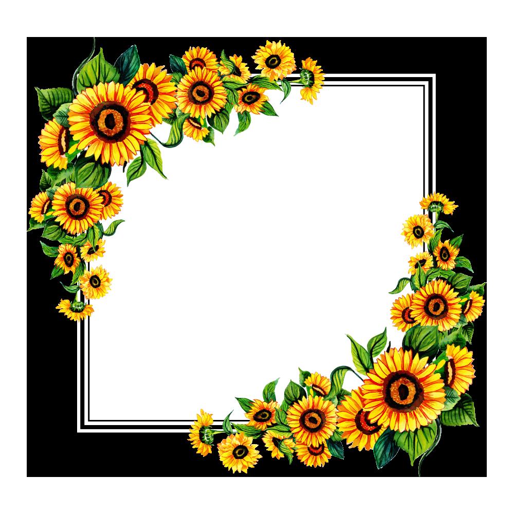 Flower Frame Transparent Image