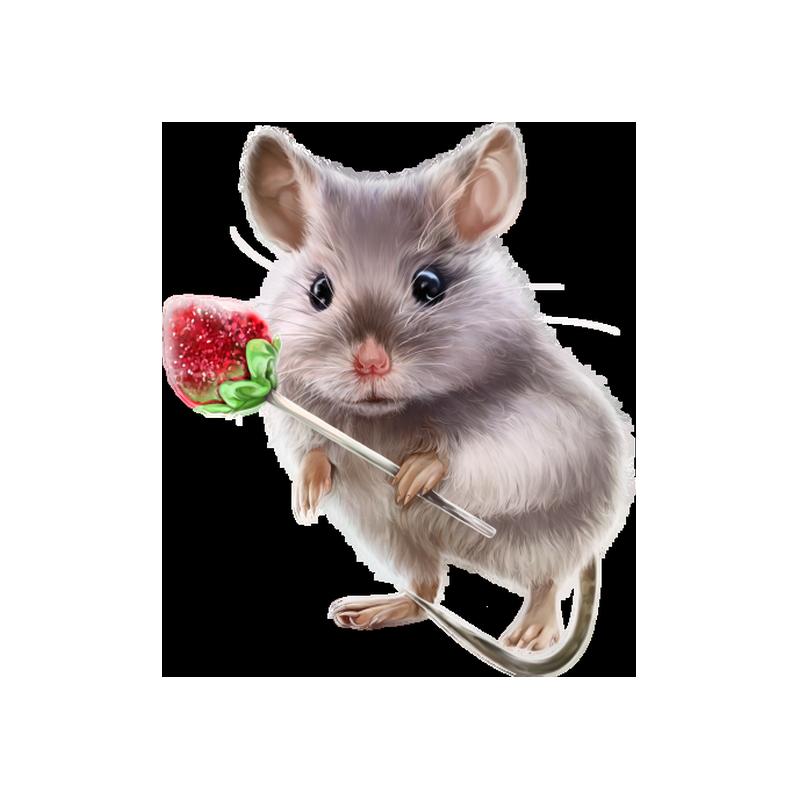Rat Transparent Image