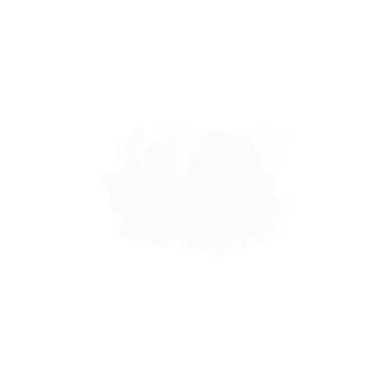Smoke Transparent Gallery