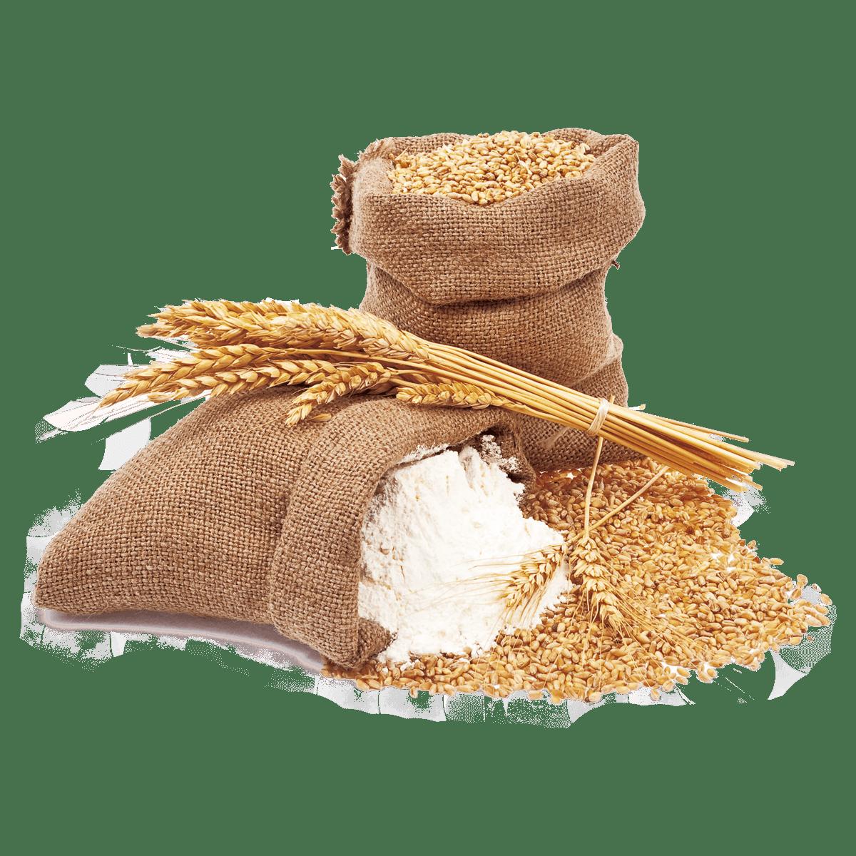 Wheat Flour Transparent Photo
