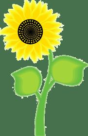 floral clip art free