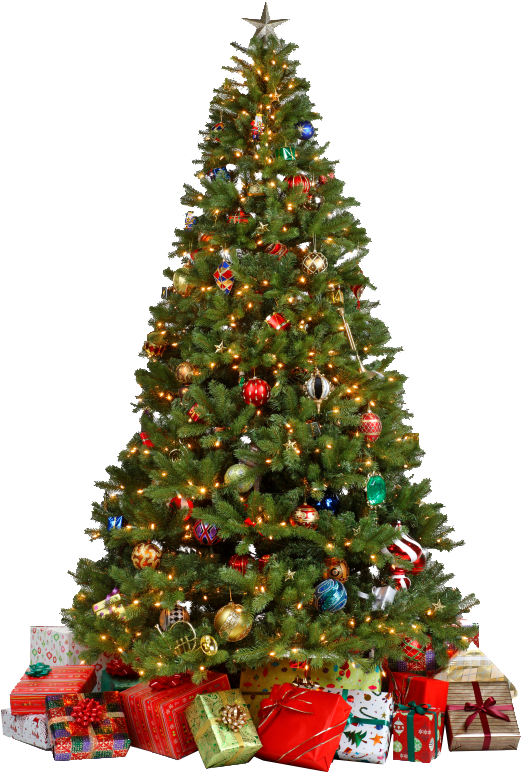 Decorated Christmas Tree Png