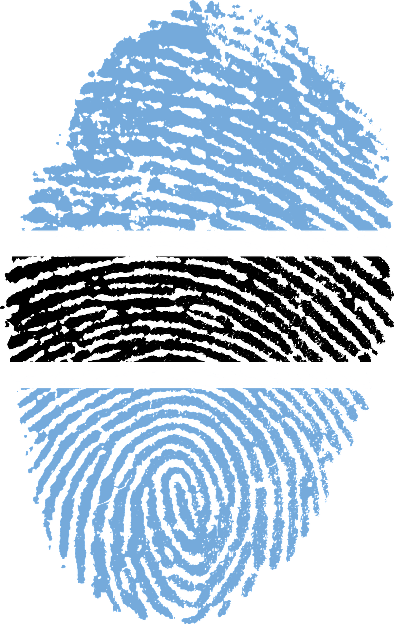 Fingerprint PNG