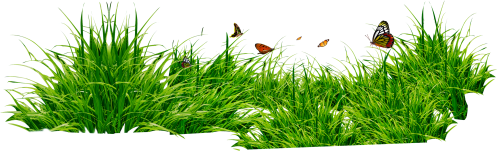 small resolution of grass png image green grass png picture