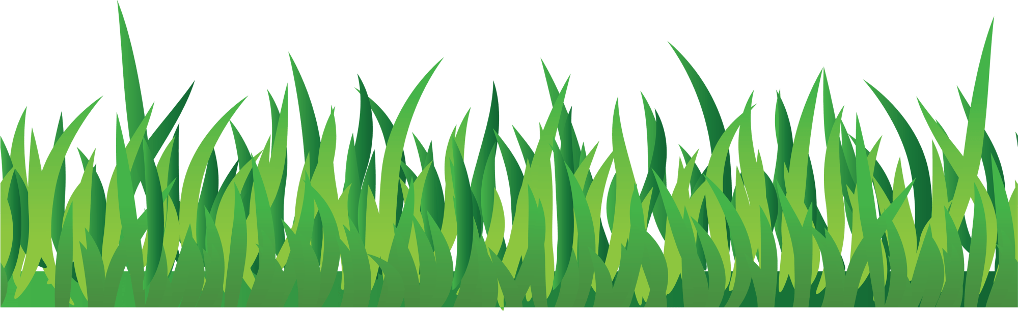 hight resolution of grass png image green grass png picture