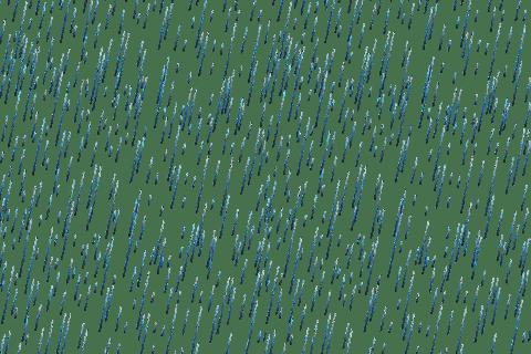 Rain PNG images free download rain drops PNG