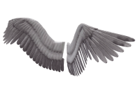 Wings PNG images free download, angel wings PNG