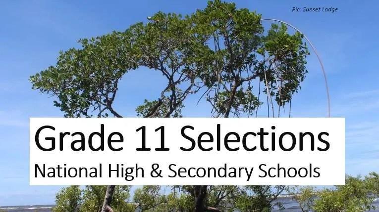 Grade 11 Selection 2021