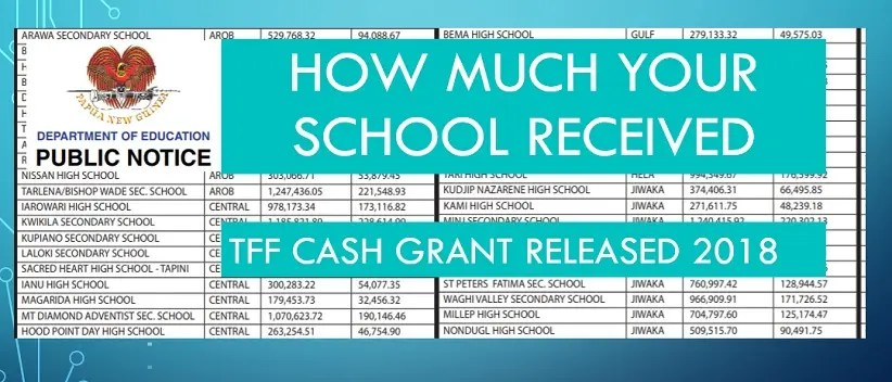 TFF Grant Released to National High, Secondary and Provincial High Schools – NDoE Published