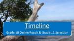 Grade 10 Online Result and Grade 11 Selection Timeline