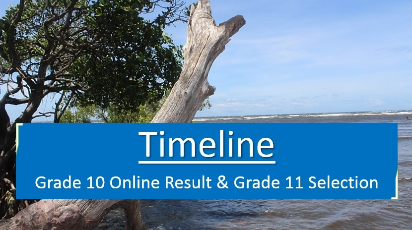 Grade 10 Online Result and Grade 11 Selection Timeline