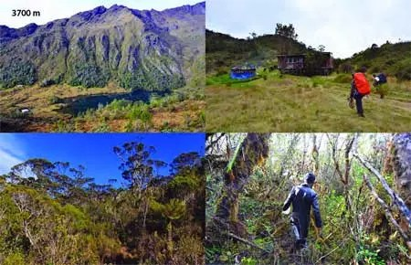 3700 m camp - mt wilhelm png