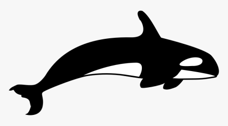 The Orca Killer Whale Clipart Black And White HD Png Download Transparent Png Image PNGitem