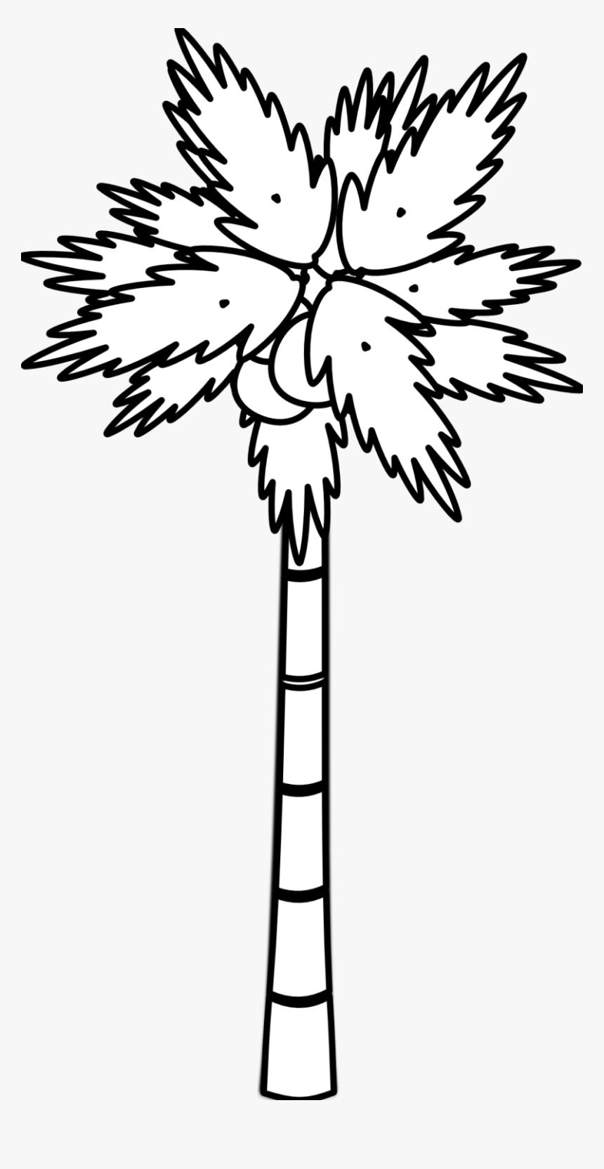 Palm Tree Clipart Black And White : clipart, black, white, Clipart, Black, White, Tree,, Download, Transparent, Image, PNGitem