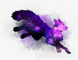 Galaxy Wolf By Violetdrawcat On Deviantart Picture Galaxy Wolf Drawing Free Transparent PNG Download PNGkey