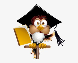 Owl With School Book Png Clipart Image Teacher Cartoon Free Transparent PNG Download PNGkey