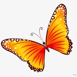 Free Clip Art Butterflies Coloring Butterfly Border Transparent Background Butterfly Clipart Free Transparent PNG Download PNGkey