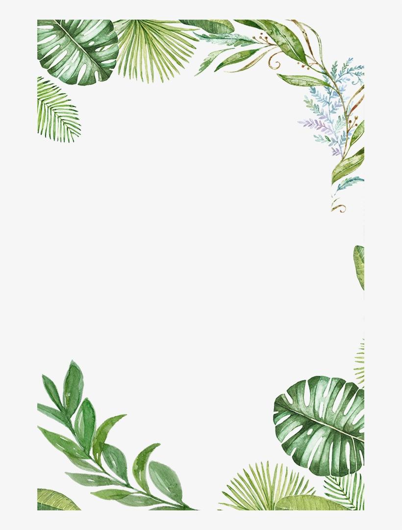 Leaf Frame Png : frame, Plants, Tropical, Jungle, Leaves, Frame, Transparent, Download, PNGkey