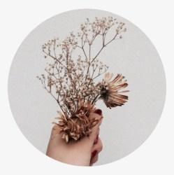 Tumblr Aesthetic Brown Flower Flowers Png Brown Tumblr Aesthetic Brown Free Transparent PNG Download PNGkey